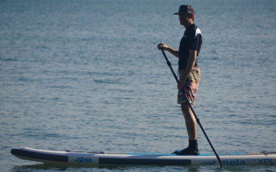 Siren Mola Board