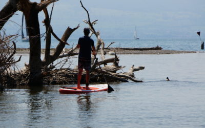 SUP Fishing – Angeln mit dem Stand up Paddle Board